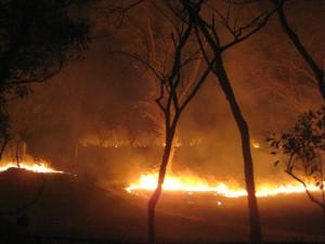Le feu près du COP Toubacouta